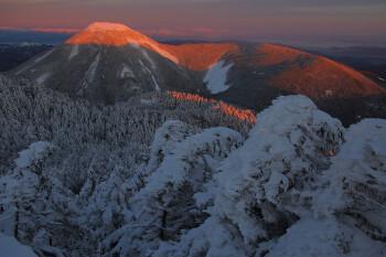 樹氷と朝陽に染まる蓼科山(1月16日撮影) Photo by Kenji Shimadate